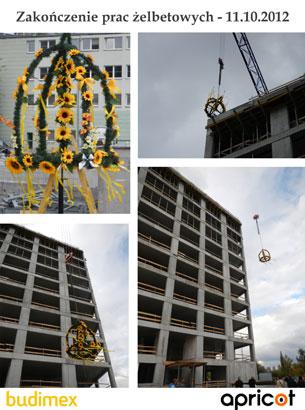Budowa-2012-11-10-v1